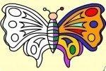 Kolorowanie Motylków
