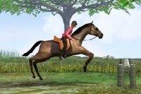 Skoki na Koniu