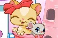 Słodycze Kociaka